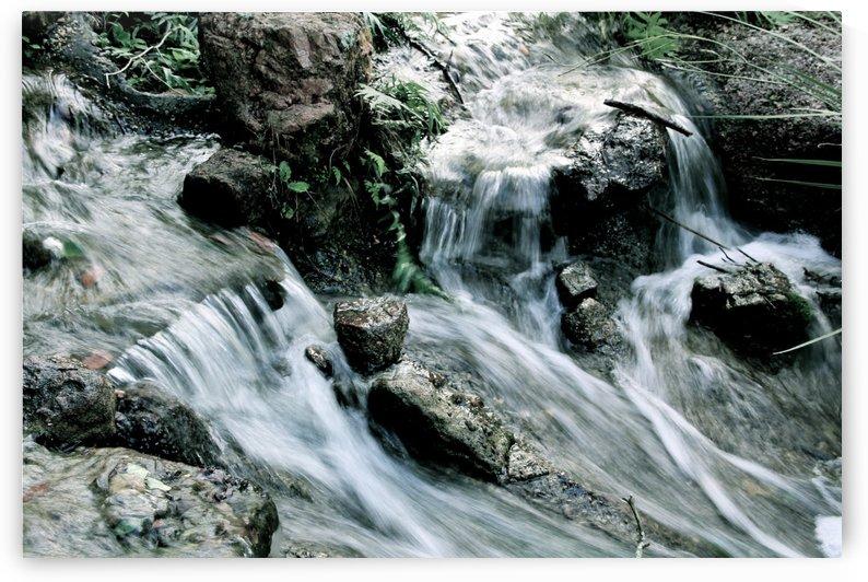 River by Tr3creatif