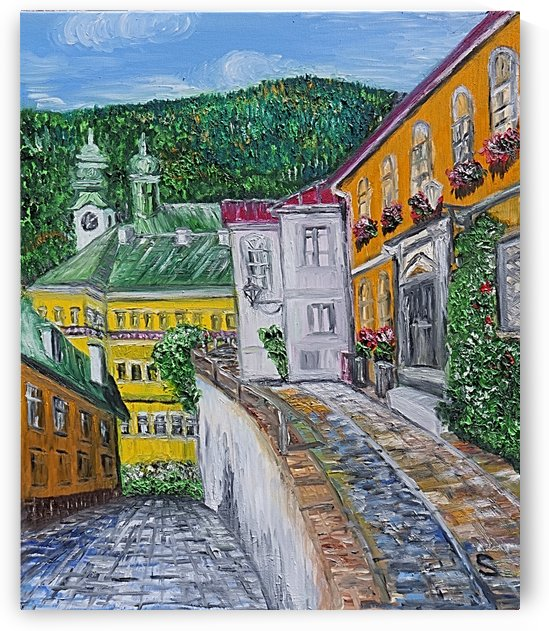New Rose Street Banska Stiavnica Central Slovakia by Edwin John