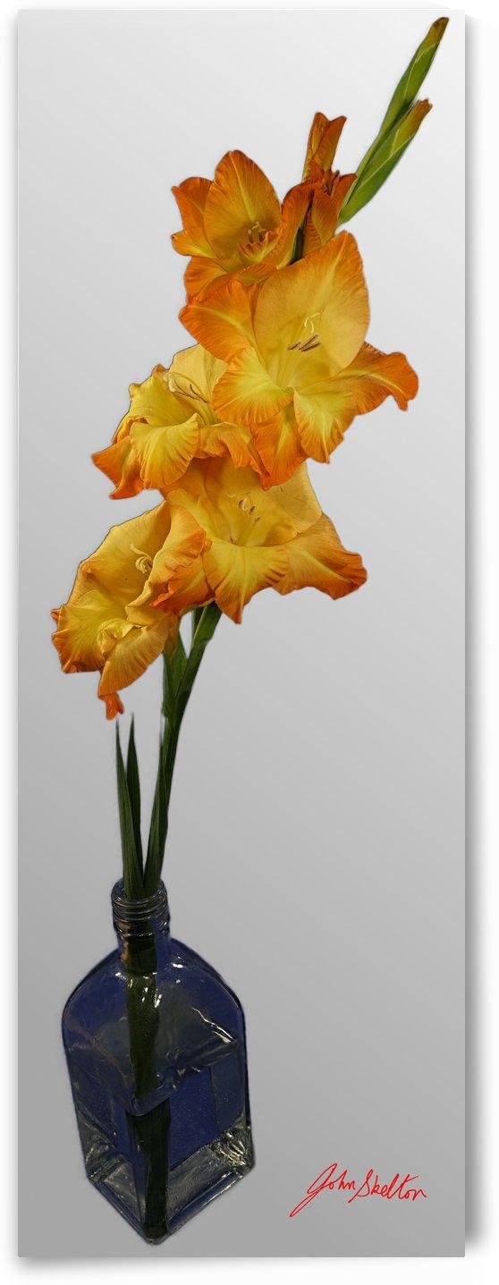 Orange-Yellow Gladiola Single Flower in glass bottle by Edwin John