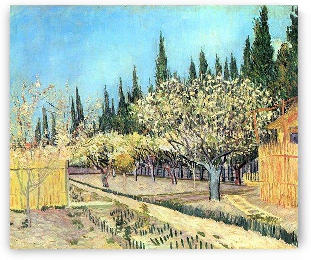 Flowering fruit garden, surrounded by cypress by Van Gogh by Van Gogh