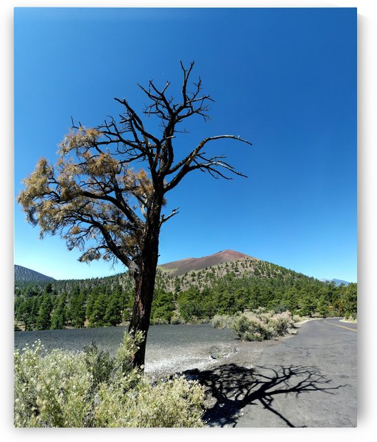 Sunset Crater by Angelo A Keene