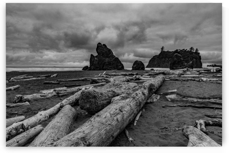Deadwood by R DEMONTREZ