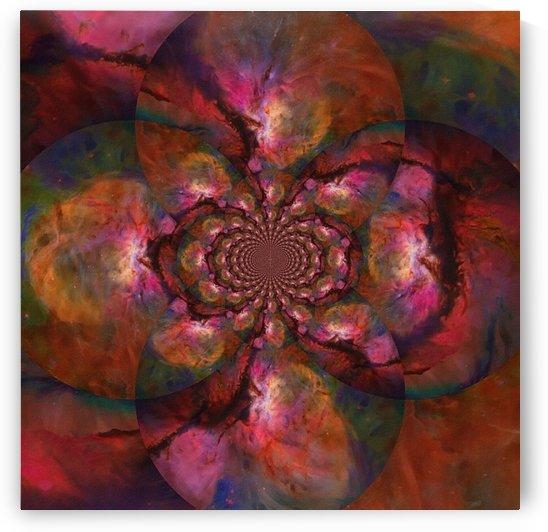 Vivid Nebulae by Bruce Rolff