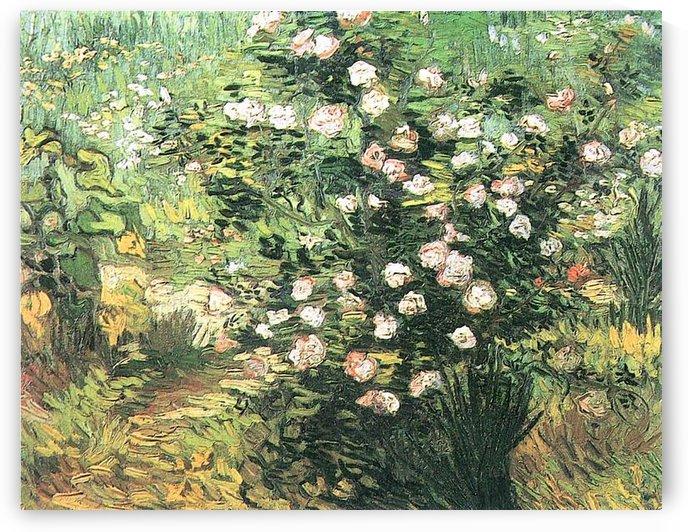 Flowering Rosebush by Van Gogh by Van Gogh