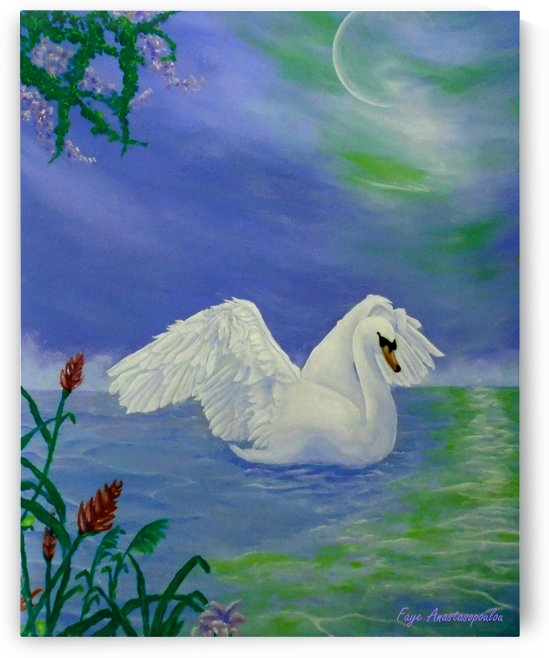Swan Night by Faye Anastasopoulou