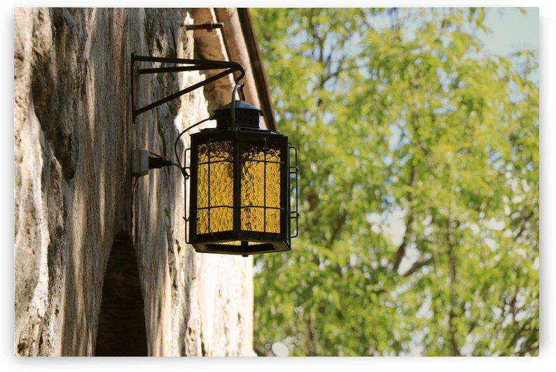 lamp by Elysia Hessler