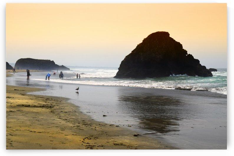 Beachgoers by Frank Wilson