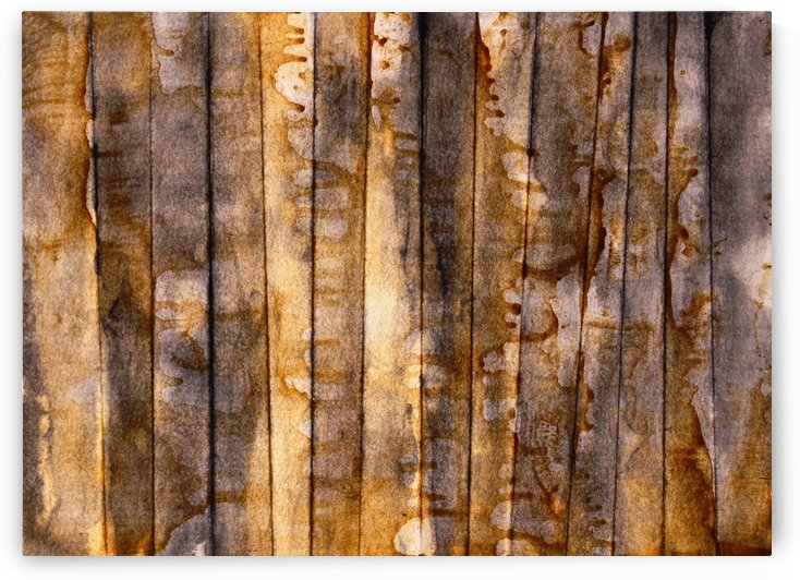 Forest 01 - Abstract Photo for Sale by Vieville abstract art