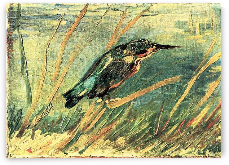 Kingfisher by Van Gogh by Van Gogh