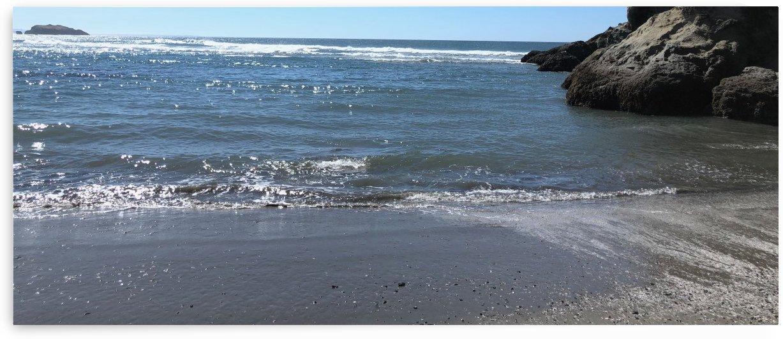 Ocean Wayside by Purplehaze_Photography