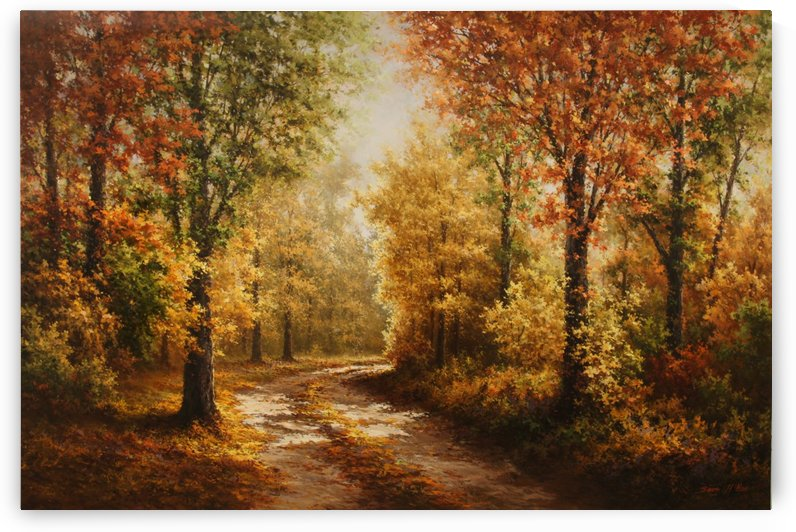 Autumn Forest Road by Sang H Han