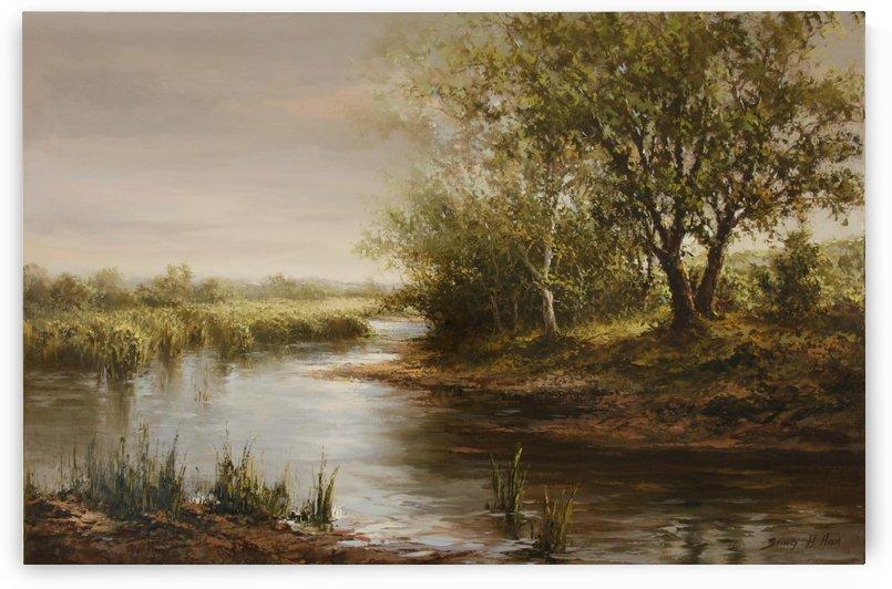 Solemn Marsh by Sang H Han