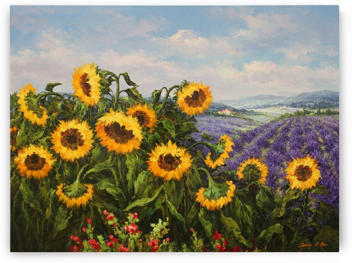 Sunflower and Lavender by Sang H Han