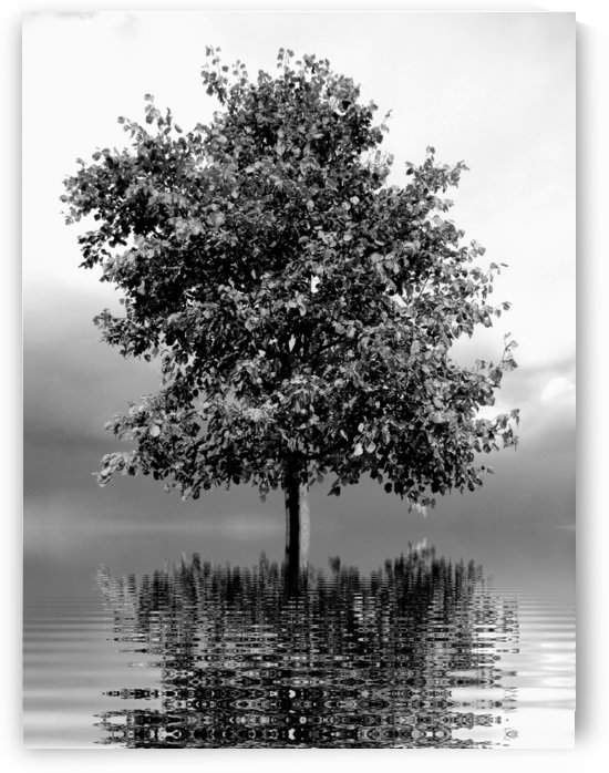 THE TREE by ART AND INSPIRATION