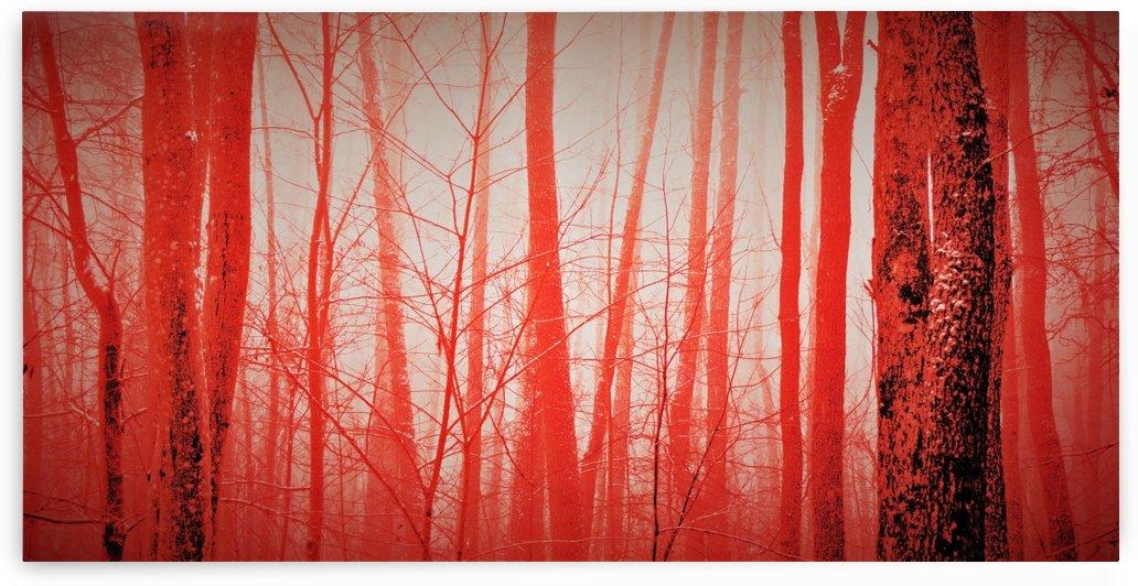 paint it red 4 by Anu Hamburg