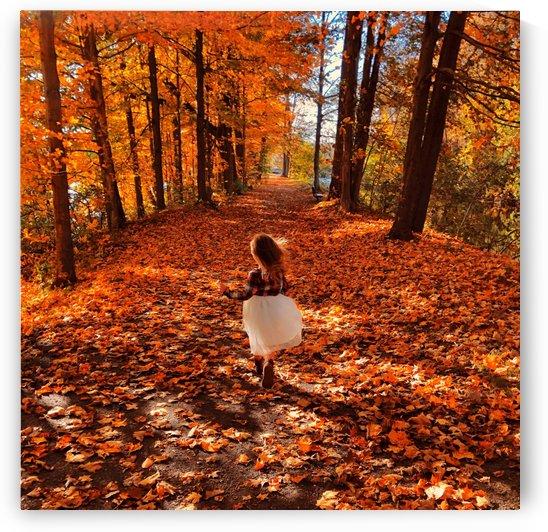 Autumn by Josh Stephen