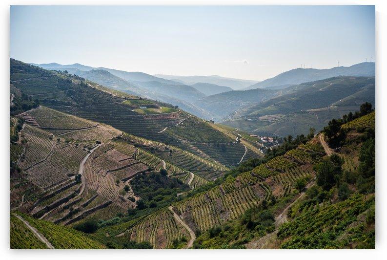 Douro by Fabien Dormoy
