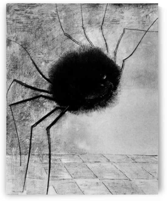 Laughing spider by Odilon Redon by Odilon Redon