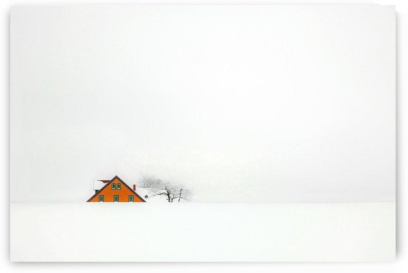 snowbound  by 1x