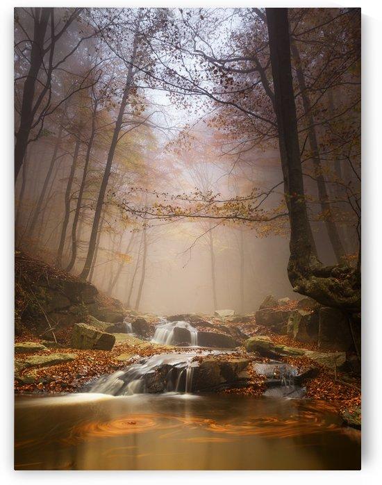 Mistyc mist by 1x
