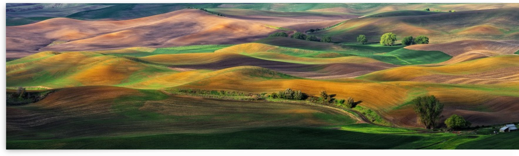 The Palouse by 1x