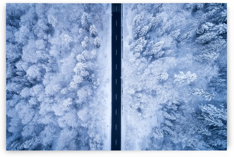 A Frosty Road by 1x