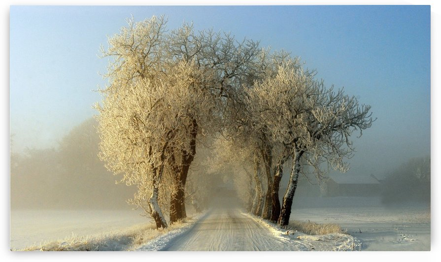 Winter  gateway by 1x