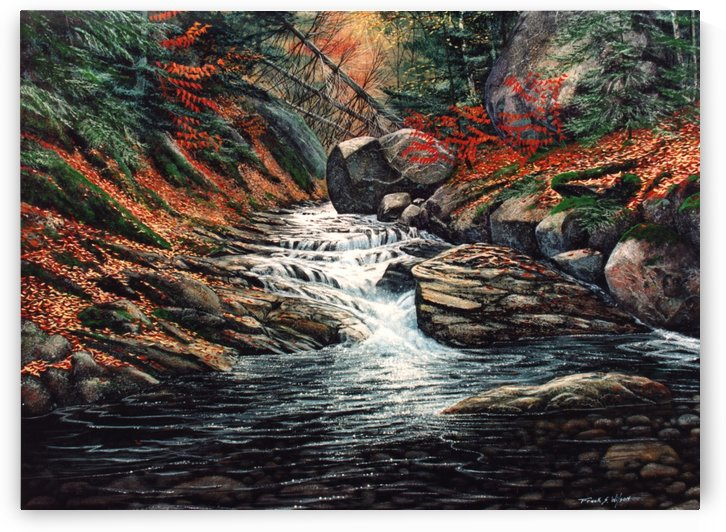 Autumn Brook by Frank Wilson