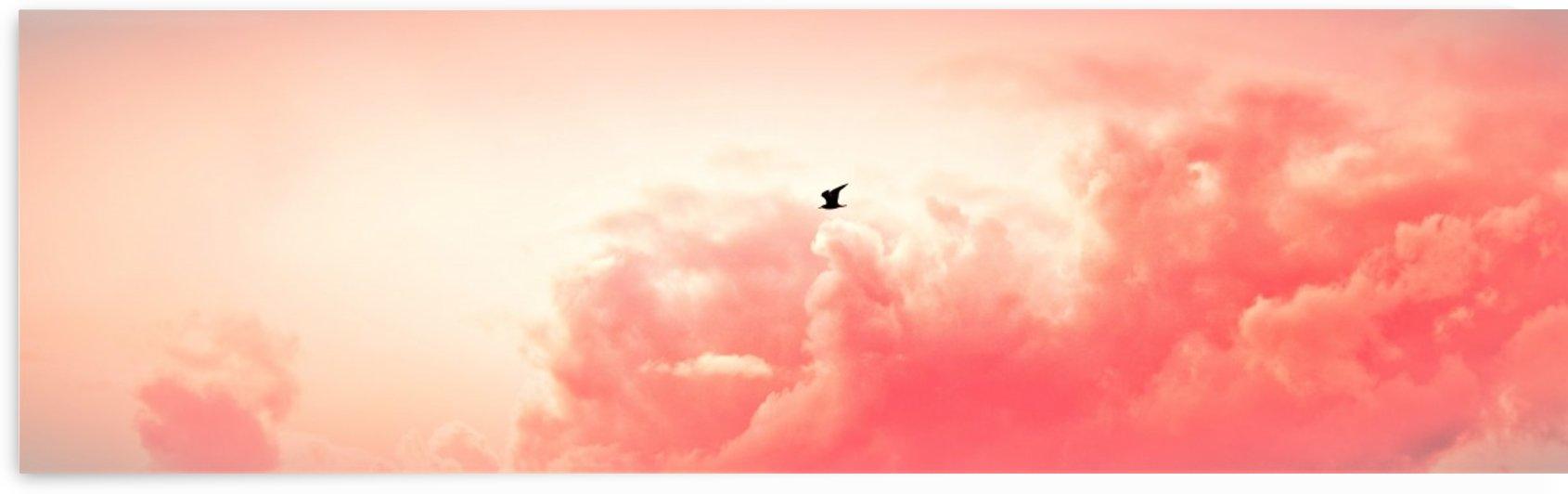 Paint it Pink by Anu Hamburg