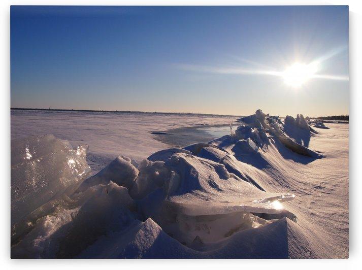 Frozen by MJBiggs
