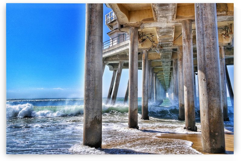 Huntington Beach  by Freedom Zoo