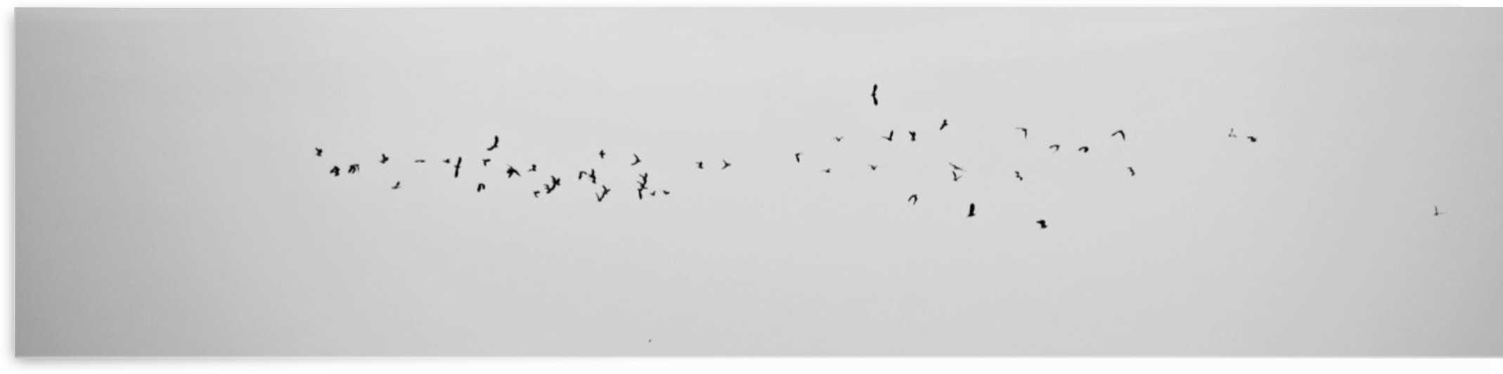 flyin away.... by Anu Hamburg