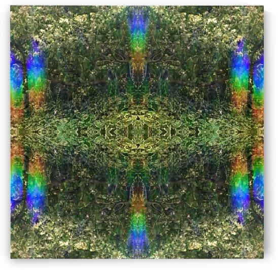 Labyrinth by deRoy Multidimensional Photography