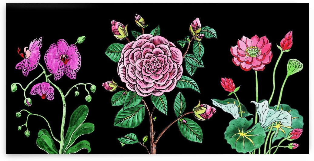 Camellia Orchid Lotus Flowers Watercolor On Black by Irina Sztukowski