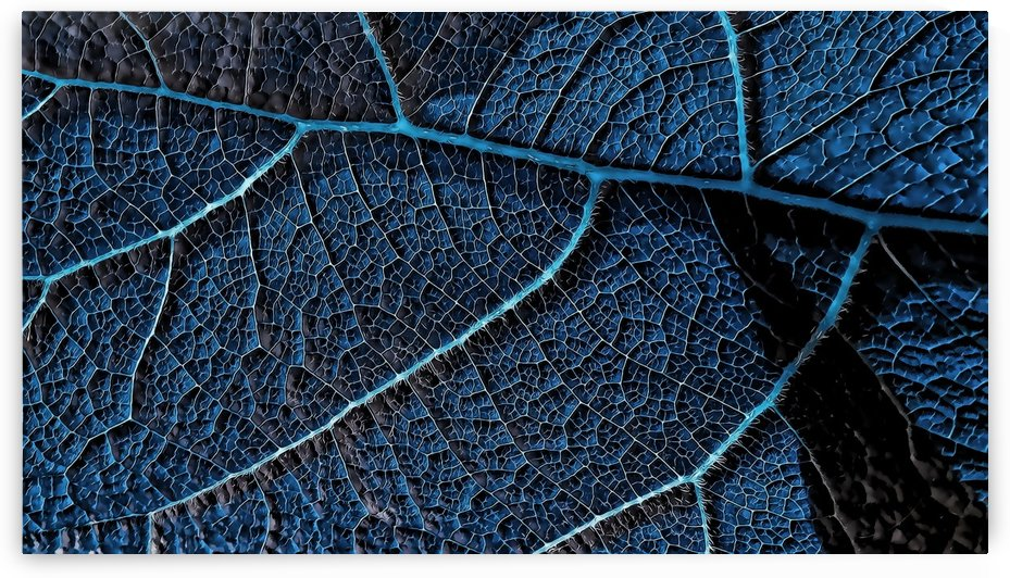Cell by cell blue leaf details - P5156639 by CiddiBiri