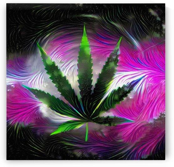 Marijuana Leaf by Bruce Rolff