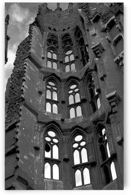 The Sagrada Familia  by Antonio Pappada