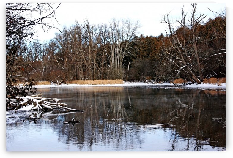 Late Fall On The River I by Deb Oppermann