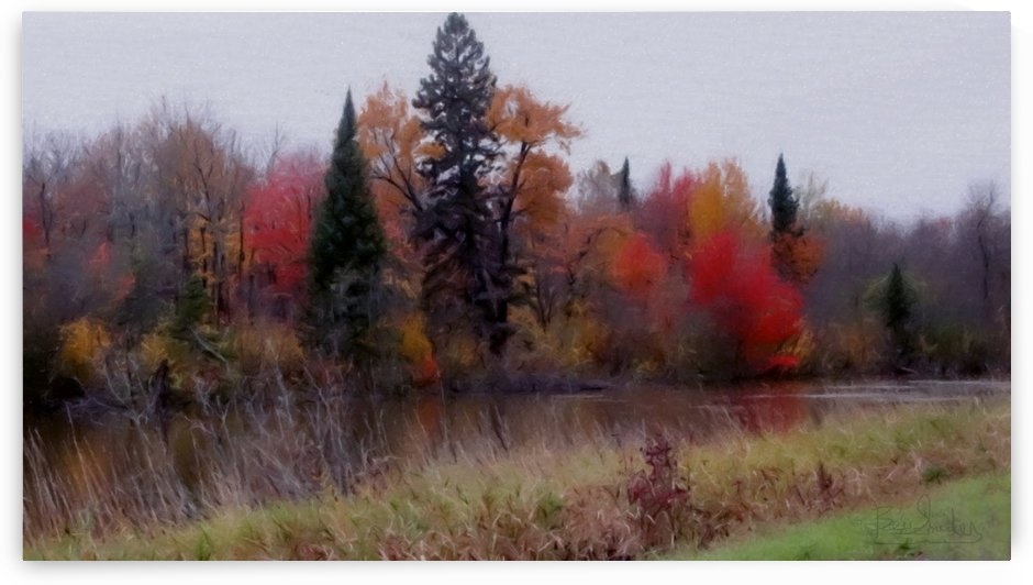 Along the River Bank 1 img7792 by Bev Snider