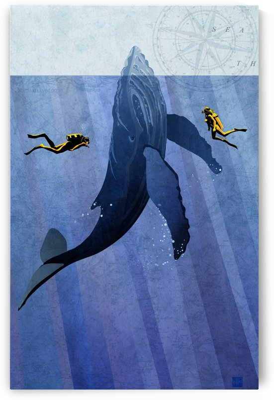 Scuba Dive with Whale by Sassan Filsoof