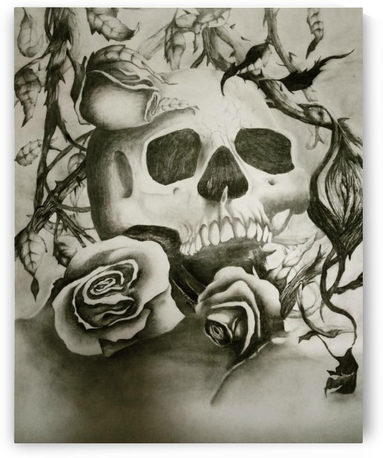 Skull and roses by sheilabi