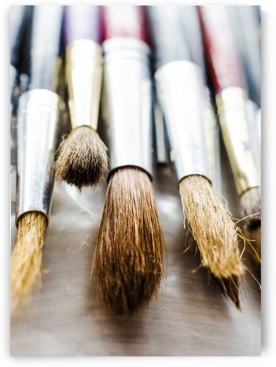 The Artists Brushes by Busybee-CR Photography
