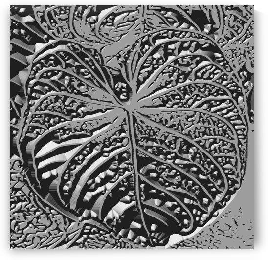 Giant Leaf  by Otradus