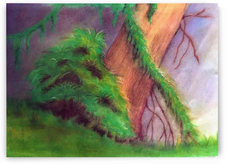 Rainforest by Ruth E Kongaika