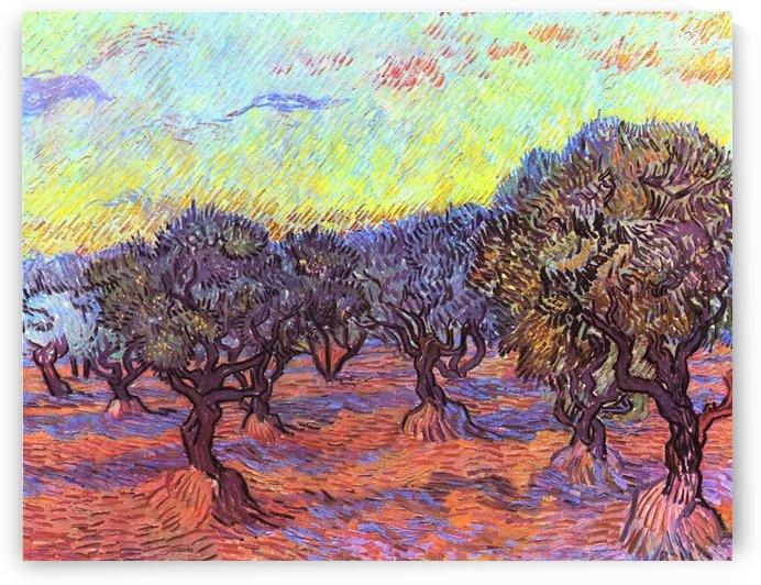 Olive Trees -2- by Van Gogh by Van Gogh
