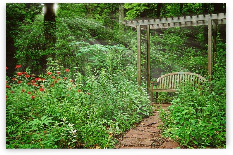 Garden Bench by Pamela Winter