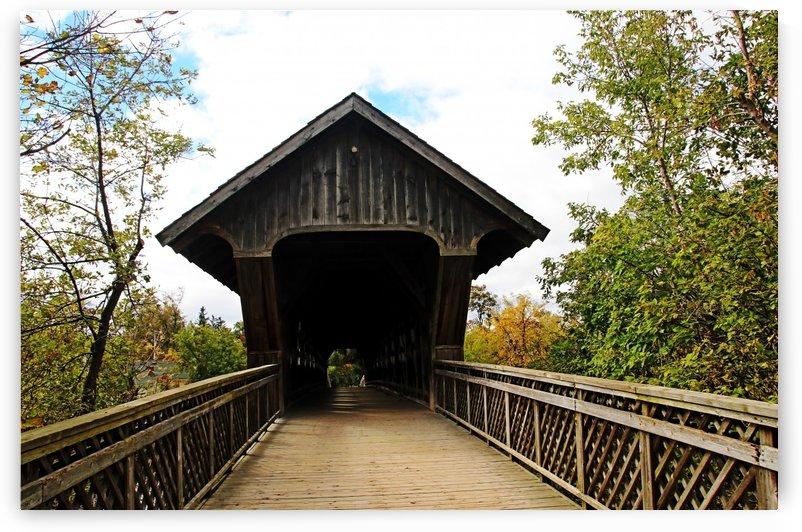 Lattice Covered Bridge Guelph   York Rd by Deb Oppermann