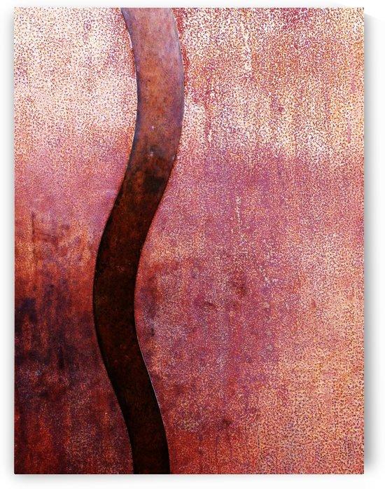 Rusty River by Mirella Pavesi