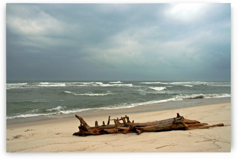 Drift after the Storm by Deb Colombo