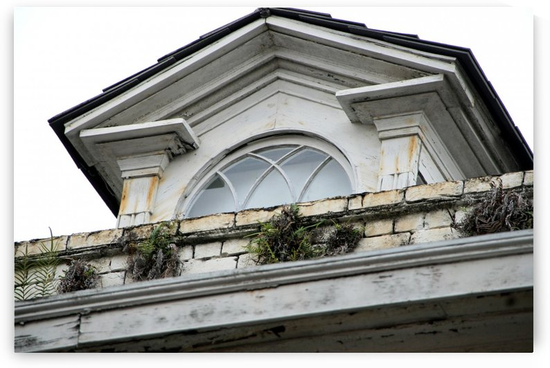 New Orleans Window Balcony by Deb Colombo